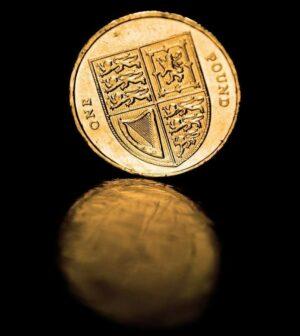 britisches Pfund -Münze
